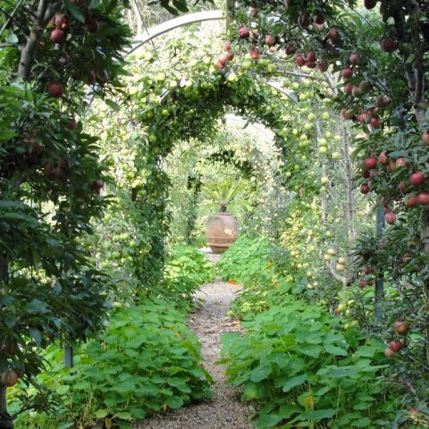 Make Your Garden Feel More Welcoming - Here's How - How to Make Your Garden Feel Welcoming, Garden Decor, Gardening Decor Tips and Tricks, How to Decorate Your Garden, Gardening, Gardening Hacks, Gardening 101, Popular Pin
