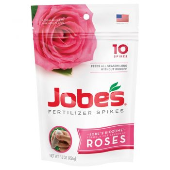 Grow English Roses: Here's How! - Growing Roses, How to Grow Roses, Grow Your Own English Roses, How to Grow Your Own English Roses, Gardening, Gardening Tips and Tricks, Gardening Hacks, Gardening 101, How to Care for English Roses.
