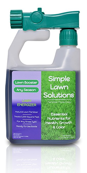 Grass-Growing Tips for Shady Areas of Your Yard - Grass Growing Tips, How to Grow Grass, Shady Lawn Care Tips, How to Grow Grass In Shady Areas, Gardening, Gardening and Landscape, Lanscaping TIps and Tricks, Popular Pin