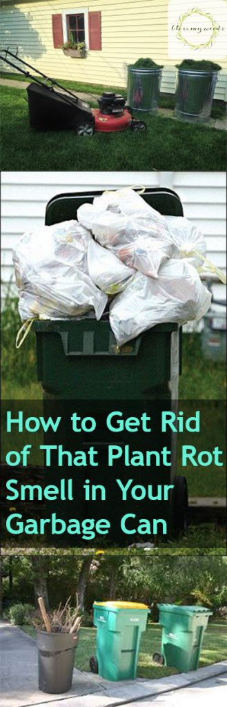 "How to Get Rid of That ""Plant Rot"" Smell in Your Garbage Can - Clean Your Garbage Can, How to Clean Your Garbage Can, Get Rid of Plant Rot Smell, How to Get Rid of the Rotting Plant Smell In Your Trashcan, Trashcan Hacks, Cleaning, Outdoor Cleaning Tips and Tricks, Popular Pin"