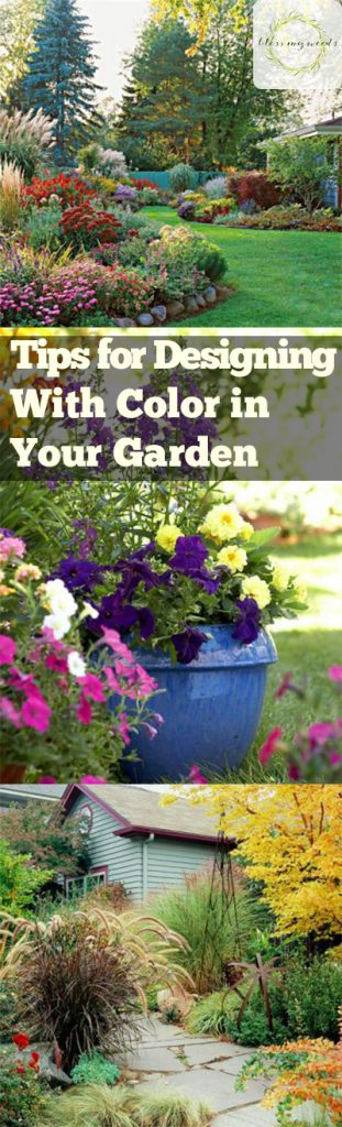 Tips for Designing With Color in Your Garden - Garden Design, Designing With Color In Your Garden, Gardening, Gardening Tips and Tricks, Garden 101, Gardening Hacks, Popular Pin