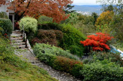 Plants to Grow On a Sloped Landscape – Plants for Sloped Yards, Plants for  a Sloped Lawn, How to Landscape A Sloped Lawn, Gardening, Gardening Hacks,  ... - Plants To Grow On A Sloped Landscape - Plants For Sloped Yards