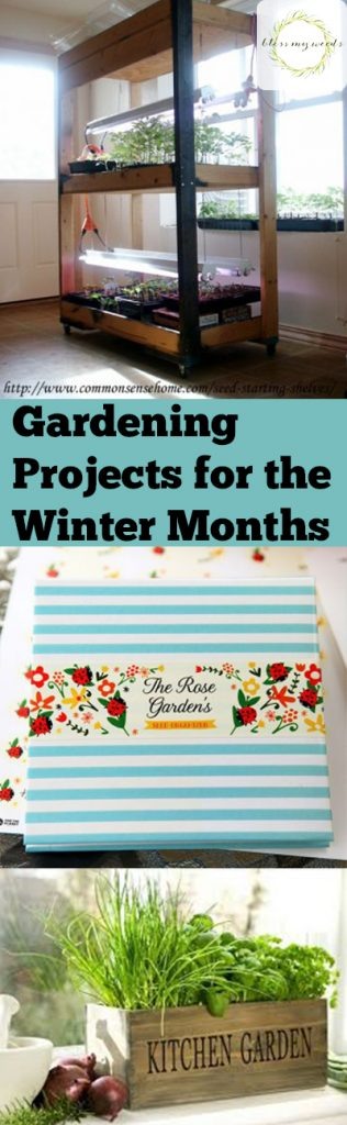 Gardening Projects for the Winter Months - Bless My Weeds\ Gardening Projects, Winter Gardening Projects, Gardening Projects for the Winter, Winter Gardening, Winter Gardening Chores, Gardening Chores for the Winter Months, Winter Gardening DIYs