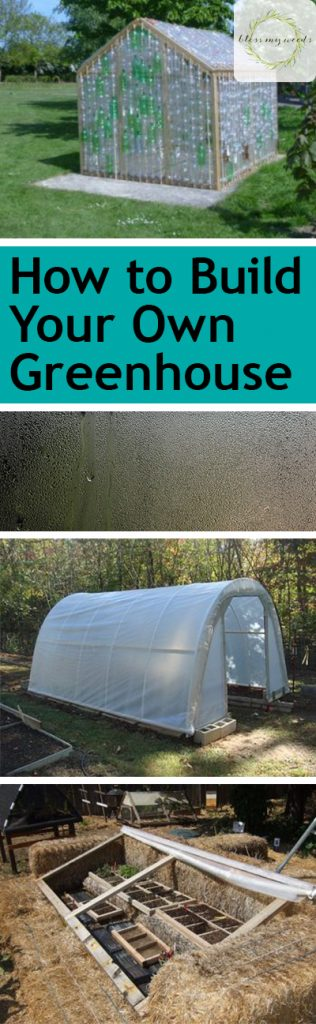 How to Build Your Own Greenhouse - Bless My Weeds| DIY Greenhouse, How to Build Your Own Greenhouse, DIY Greenhouse Projects, Outdoor DIY Projects, Easy to Build Greenhouses, Greenhouse Projects, Popular Pin