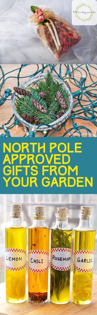 North Pole Approved Gifts From Your Garden - Bless My Weeds| Gardening Gifts, Gifts for the Garden, Gifts from the Garden, DIY Garden Gifts, Christmas Gifts, Easy Christmas Gifts, Popular Pin #Garden #Gardening #GiftIdeas #DIYGifts