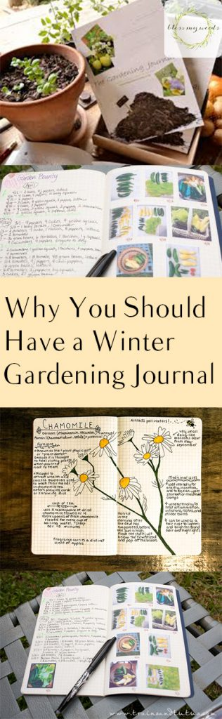 Why You Should Have a Winter Gardening Journal - Bless My Weeds| Winter Gardening, Winter Gardening Journal, Winter Gardening Projects, Gardening, Gardening Projects, Garden Care, Winter Gardening Care, Popular Pin #WinterGarden #WinterGardening #WinterGardeningTIps #Gardening #GardeningJournal