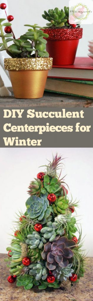 DIY Succulent Centerpieces for Winter - Bless My Weeds| Winter Centerpieces, Garden Crafts, Succulent Centerpieces, DIY Succulent Centerpieces, Winter DIYs, DIY Garden Crafts, Garden Crafts for Winter, Holiday Gardening Tips and Tricks, Popular Pin #Gardening #HolidayGardening #Succulents #DIYCenterpieces