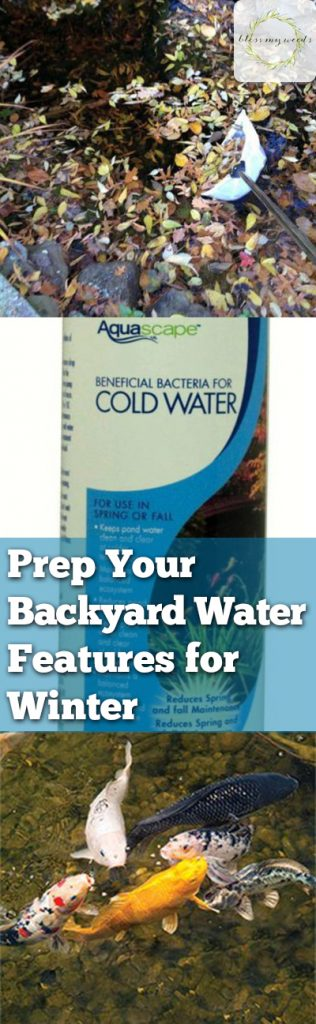Prep Your Backyard Water Features for Winter - Bless My Weeds| Winter Yard Features, Gardening, Gardening Care, Winter Care Hacks, Landscaping, Winter Landscaping Prep, Popular Pin #WinterGardening #Gardening