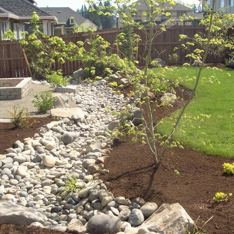 How to Make a DIY Dry Creek - Bless My Weeds| Dry Creek, DIY Dry Creek, Dry Creek Landscaping, Landscaping, Landscaping TIps and Tricks, Make Your Own Dry Creek, Easy Landscaping Tricks, Outdoor DIY, Popular Pin #DryCreek #DIYDryCreek #Gardening #Landscaping