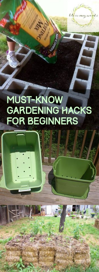 Must-Know Gardening Hacks for Beginners - Bless My Weeds| Gardening for Beginners, Gardening Hacks, Gardening Ideas, Garden Ideas, Front Garden Ideas, Garden Design, Garden Design Ideas