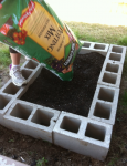 Must-Know Gardening Hacks for Beginners - Bless My Weeds  Gardening for Beginners, Gardening Hacks, Gardening Ideas, Garden Ideas, Front Garden Ideas, Garden Design, Garden Design Ideas