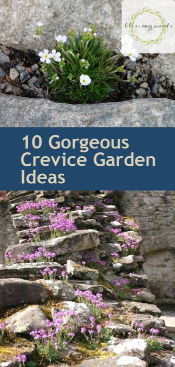 10 Gorgeous Crevice Garden Ideas | Crevice Garden Ideas | Crevice Garden | Gardening | DIY Garden Ideas | Gardening