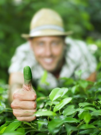 green thumb, how to grow a green thumb, how to be a green thumb, DIY green thumb, green thumb tips and tricks