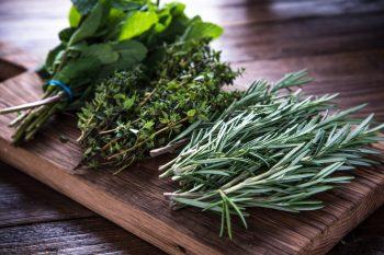 Common Herbs List & Their Benefits   Common Herbs   Benefits of Common Herbs   Herbs and Their Benefits   Herbs