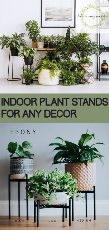 Indoor Plant Stands For Any Decor Bless My Weeds Diy