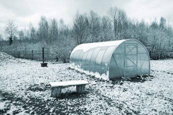 Cold Frame Gardening | DIY Cold Frame Garden | Winter Gardening | Gardening | Gardening Tips and Tricks