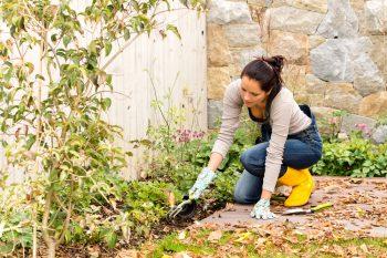Fall Gardening Tips | Fall Garden | Fall Gardening Tips and Tricks | DIY Fall Gardening | Gardening | Fall Gardening | Fall Gardening Hacks