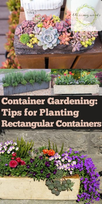 Container Gardening | Rectangular Containers | Container Gardening Tips | Rectangular Container Gardening | Rectangular Container Gardens