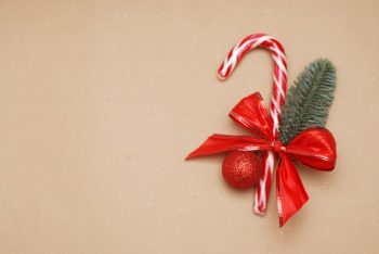 Evergreens   Gifts Adorned with Evergreens   Gift Wrapped with Evergreens   Evergreen Gifts   Gifts with Evergreens   Evergreen Decor   Evergreen Decorations   Evergreen Tips and Tricks