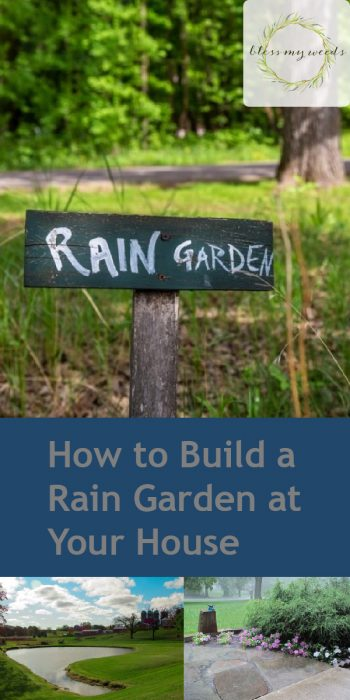 Rain Garden | DIY Rain Garden | Build Your Own Rain Garden | Rain Garden Tutorial | How to Build a Rain Garden | Rain Garden Tips and Tricks