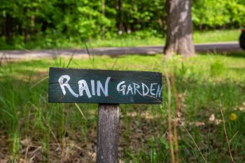 Rain Garden | DIY Rain Garden | Build Your Own Rain Garden | Rain Garden Tutorial | How to Build a Rain Garden | Rain Garden Tips and Tricks