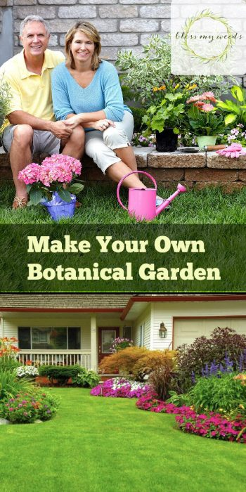 Botanical Garden | Make Your Own Botanical Garden | DIY Botanical Garden | Steps to Grow Your Own Botanical Garden | Botanical Garden Tips and Tricks