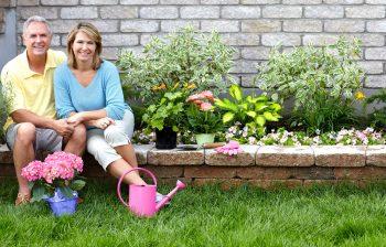 Botanical Garden | Make Your Own Botanical Garden | DIY Botanical Garden | Steps to Grow Your Own Botanical Garden | Botanical Garden Tips and Tricks