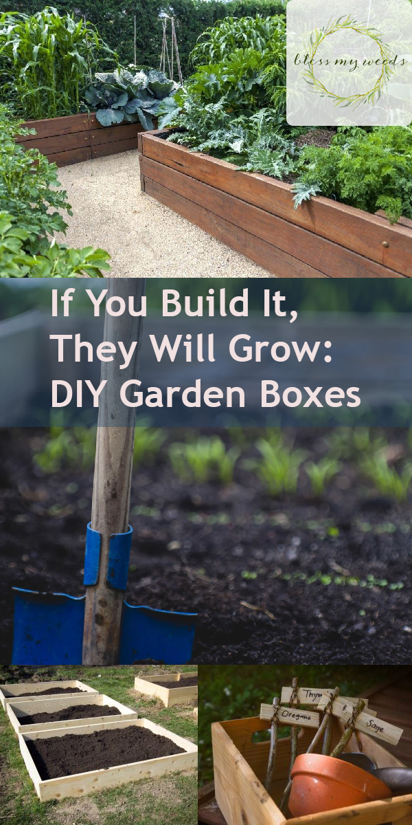 If You Build It They Will Grow Diy Garden Boxes Bless My Weeds