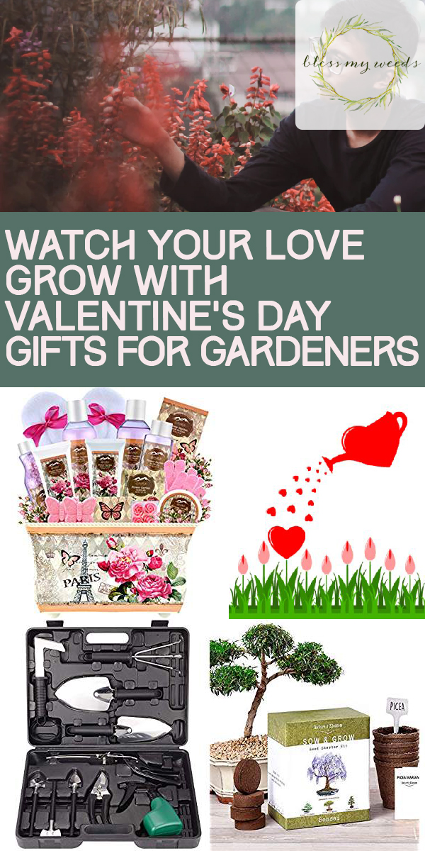 valentine's day gifts for gardeners | gifts for gardeners | valentine's day | gardeners | gifts | valentine