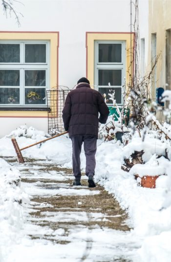 sweeping snow | snow | garden | snowfall | sweep your snow | when to sweep snow | gardening tips | winter | winter gardening