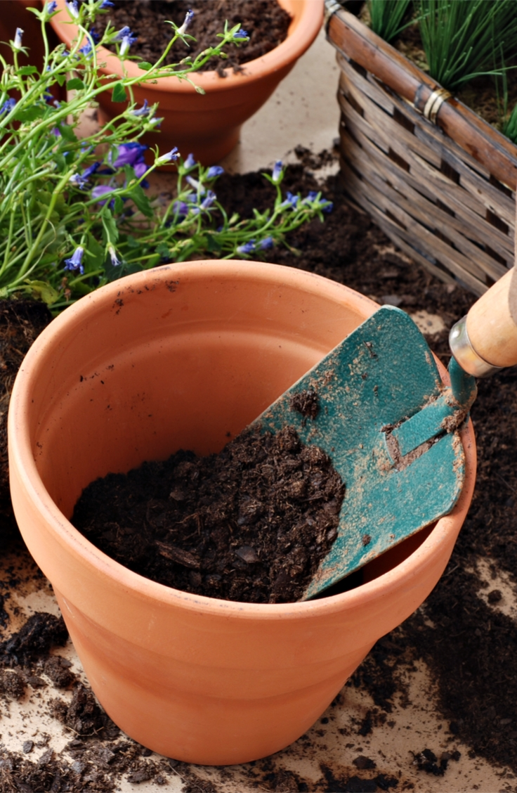 Gardening archives bless my weeds - Best soil for container gardening ...