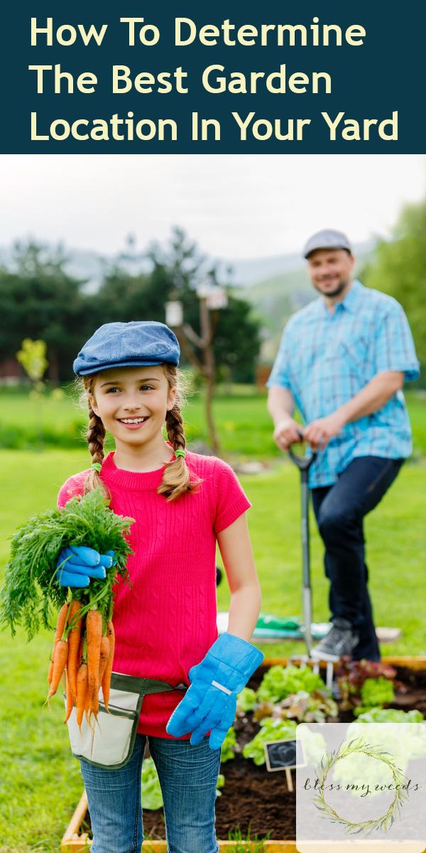 best garden location | garden | garden location | garden in your yard | best garden in your yard | best garden location in your yard