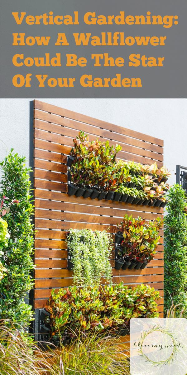 vertical gardening | gardening | garden | gardening ideas | garden ideas | small garden | small garden space | garden space