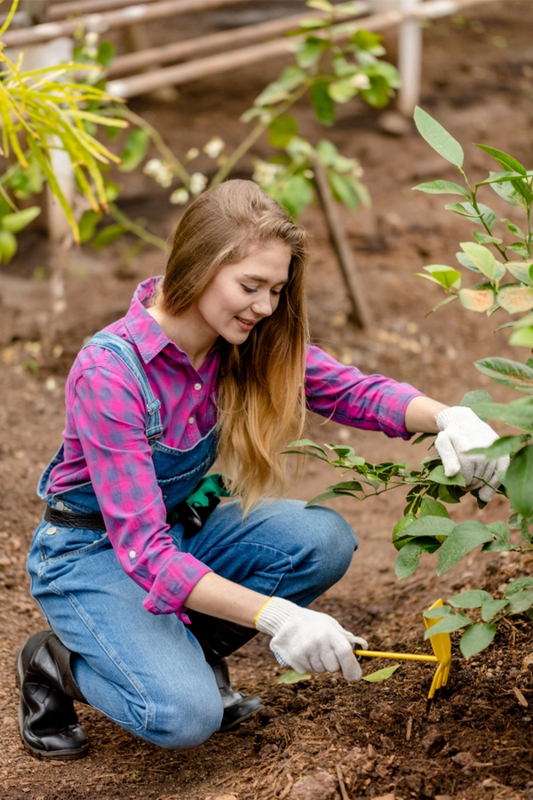 gardening mistakes | biggest gardening mistakes | gardening | garden | garden mistakes | garden tips | gardening tips