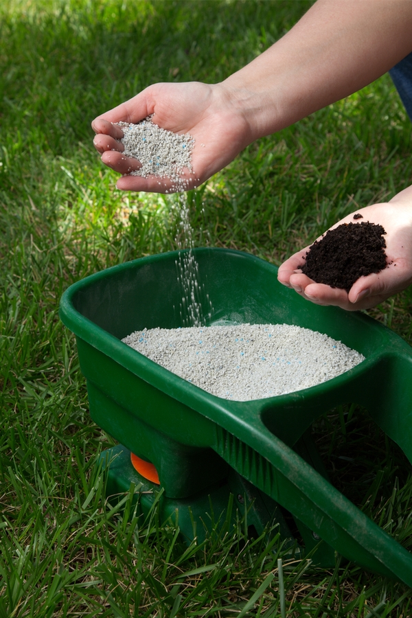 green up your lawn | ironite | lawn care tips | lawn | lawn care | green grass | green lawn | go green