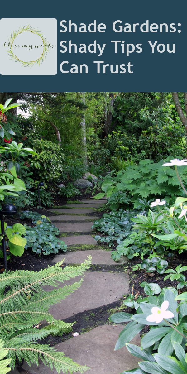 Shade Gardens | shade garden tips | tips and tricks | shade | gardens | garden ideas | gardening | gardening tips