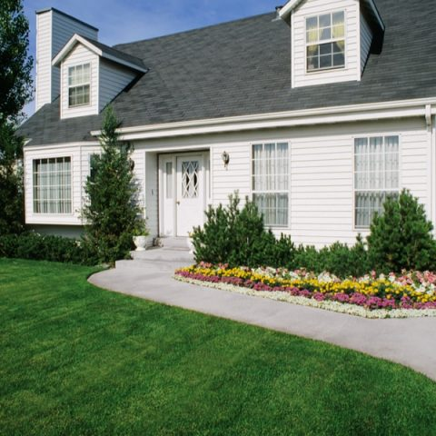 Tips To A Green Lawn