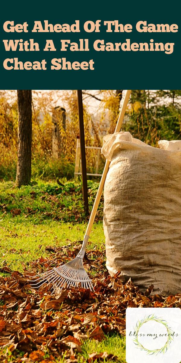 Fall Gardening Cheat Sheet | fall | fall gardening | gardening | tips and tricks | gardening tips