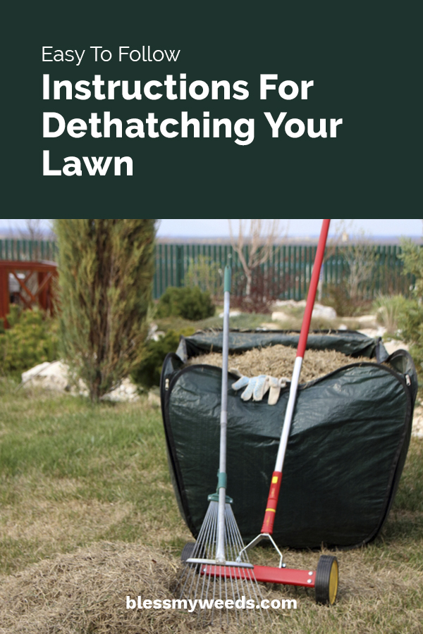 easy to follow instructions for dethatching your lawn
