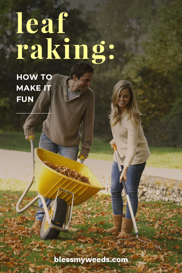 Everyone needs to know these leaf raking tips and how to make it fun