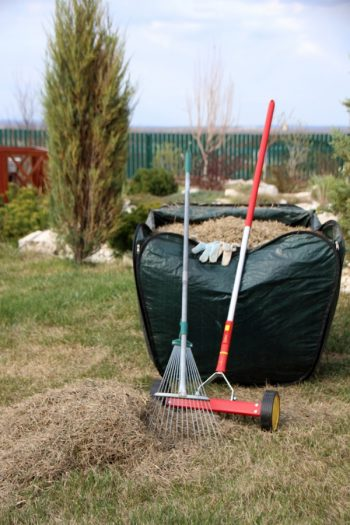 Dethatching your lawn | dethatch your lawn | instructions for dethatching your lawn | lawn | lawn care | lawn tips |