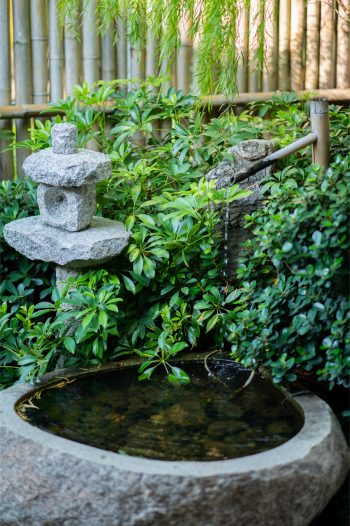 Water features are a big part of Japanese gardens. Here's everything you need to know about creating your own Japanese garden.