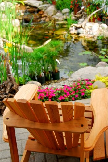 Japanese gardens are such a beautiful and peaceful place. Here's how you can create your own Japanese garden. You will love it!