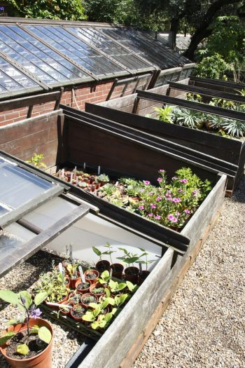 If you live in a colder climate, but you love gardening, you need to know about cold frame gardening. It will totally change the way you garden for the better.
