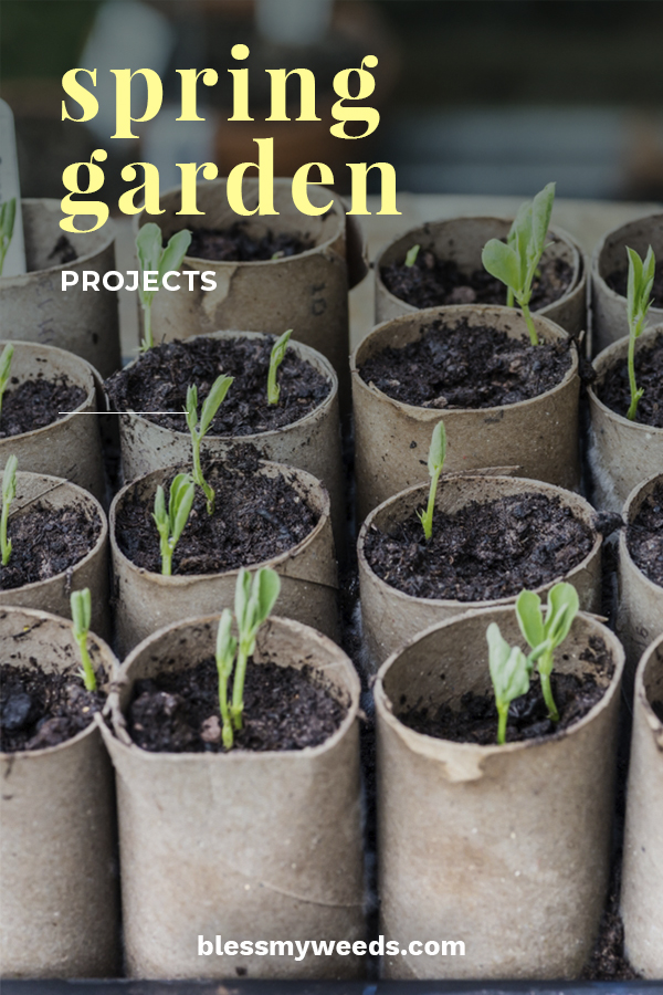 Gardening is most popular during the warmer months and it's obvious why. But, did you know that their are plenty of spring projects that you can work on in the winter? Hard to believe isn't it? The ground may be frozen and it is bitter cold outside, but that doesn't need to stop you from keeping your green thumb in good shape. Want to know how? Keep reading to see how you can keep your passion alive even when it's dang cold. #gardeningtips #wintergardeningtips #springgardeningprojects