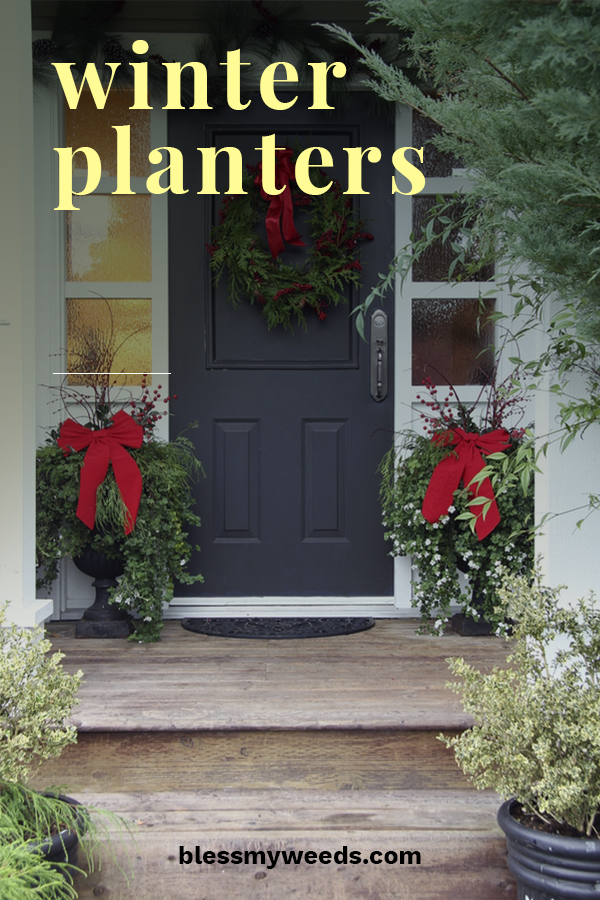 Winter planters have to be one of my favorite looks. Greenery that takes your breath away on a chilly winter day. If you want to learn how you can create this look, we have some fantastic ideas for you. From plants to use to decorating ideas and more, we even have ideas for a Christmas planter. Make your front porch the talk of the neighborhood with the winter planters that will warm your heart. #porchdecorideas #winterplanters #wintergardeningideas