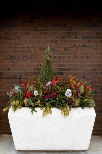 Just because it's winter doesn't mean your planters have no use! These Front Porch Winter Planters ideas will make your house look absolutely amazing!