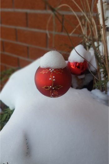 Don't be afraid to keep your planters in use all year long. These winter planters will make the outside of your house look so cute. You can even add ornaments to your planters for an extra pop.