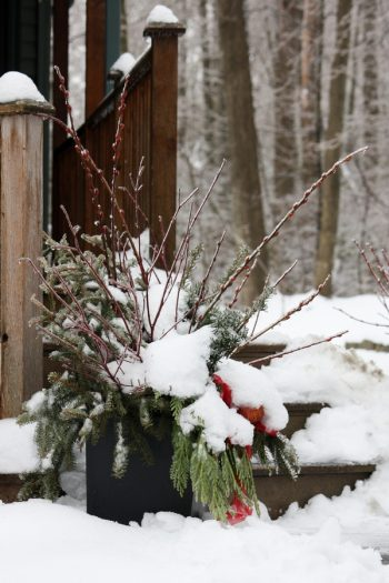 Most people think that they can't use their planters in the winter, but they're wrong! These amazing winter planters will look so cute and festive!
