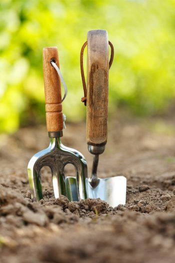 In order to have a successful garden, you must first know the soil layers. This will ensure your soil is as healthy as it can be.